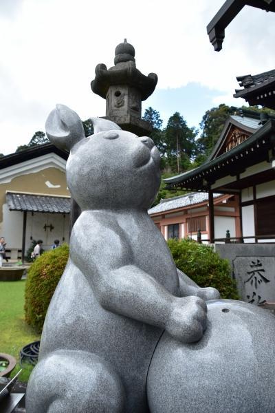 2019-06-16 京都三室戸寺 058.JPG