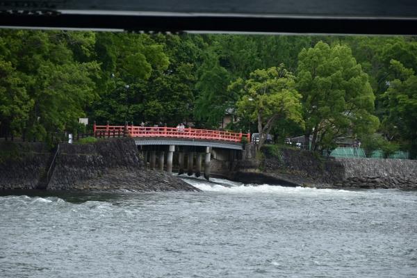 2019-06-16 京都三室戸寺 299.JPG