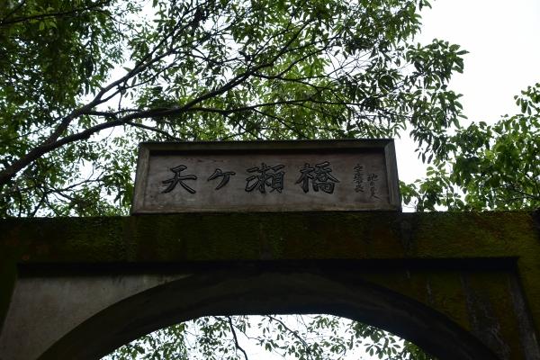 2019-06-16 京都三室戸寺 306.JPG