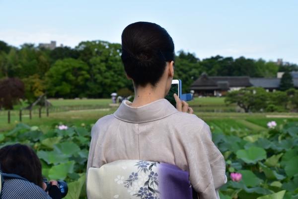 2019-07-07 観蓮節 082.JPG