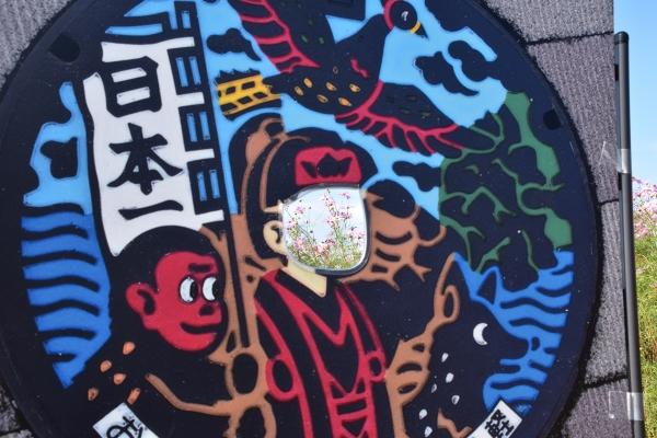 2019-10-05 岡東浄化場コスモス 024.JPG