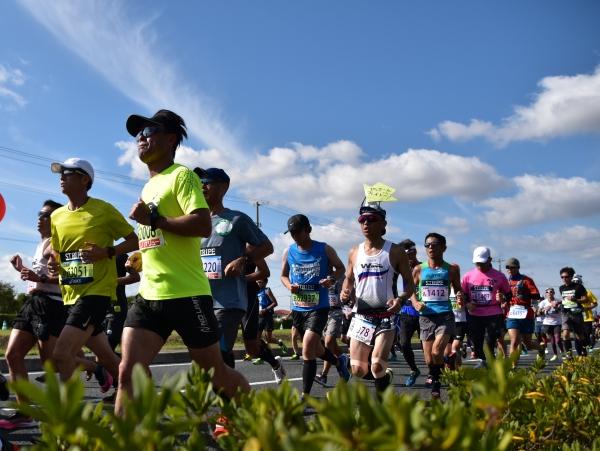 2019-11-10 岡山マラソン 046.JPG