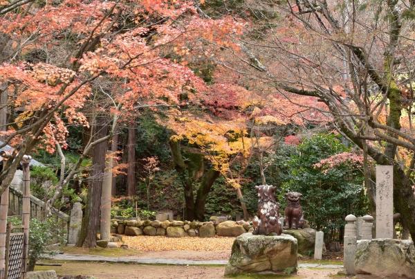 2019-12-03 松琴寺 061.JPG