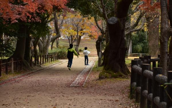 2019-12-07 かいとかなと後楽園 318.JPG