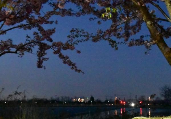2020-03-06 カイト・カナト・ 200.JPG