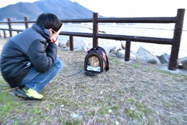 2020-03-06 カイト・カナト・ 083.JPG