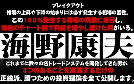 日経225個人投資家のための戦略 成功談 失敗談を本音でチェック 海野康夫(株式会社夢丸)