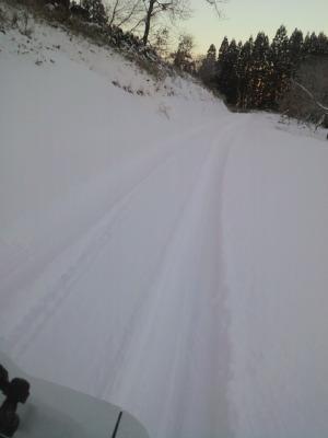 大分県日田市の豪雪地帯