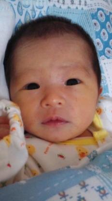 堀さんの初孫ちゃん!ひなたちゃんです。目がクリっクリっしていて可愛いですね(*^_^*)