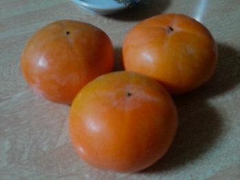 柿の木|年を重ねても安心・快適に住めるバリアフリーの住まい-福岡県久留米市-