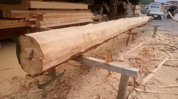 大黒柱候補|福岡県粕屋郡の木造理の家