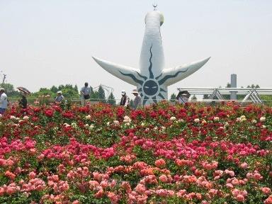 平和のバラ園からの太陽の塔・背面
