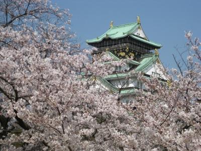 大阪城と桜 2