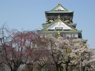 大阪城と桜 3