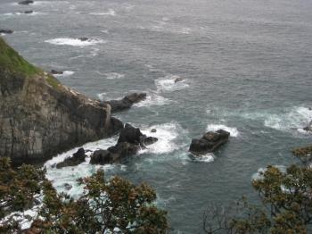 足摺岬展望台からの断崖