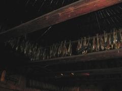 吊るされた燻製の鮭