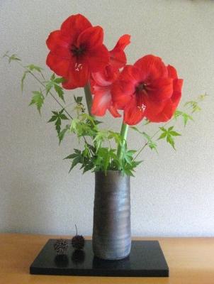 真紅のアマリリス 生け花