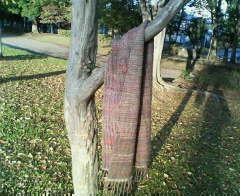 織り編みの撮影