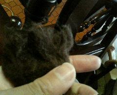 羊毛洗った