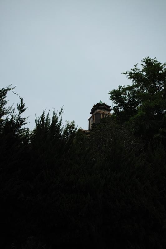名古屋城三之丸木立深く.JPG