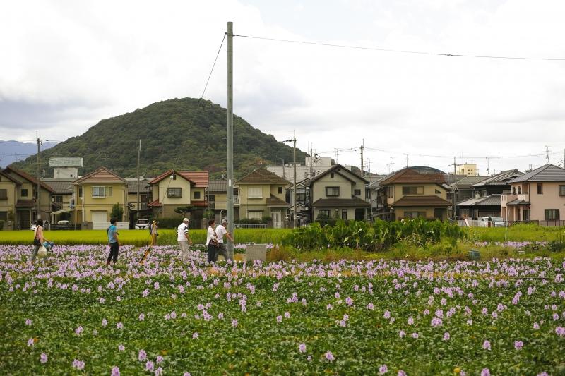 城殿町風景.JPG