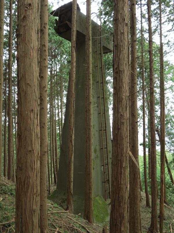 旧比叡山空中ケーブル 中間支柱.JPG