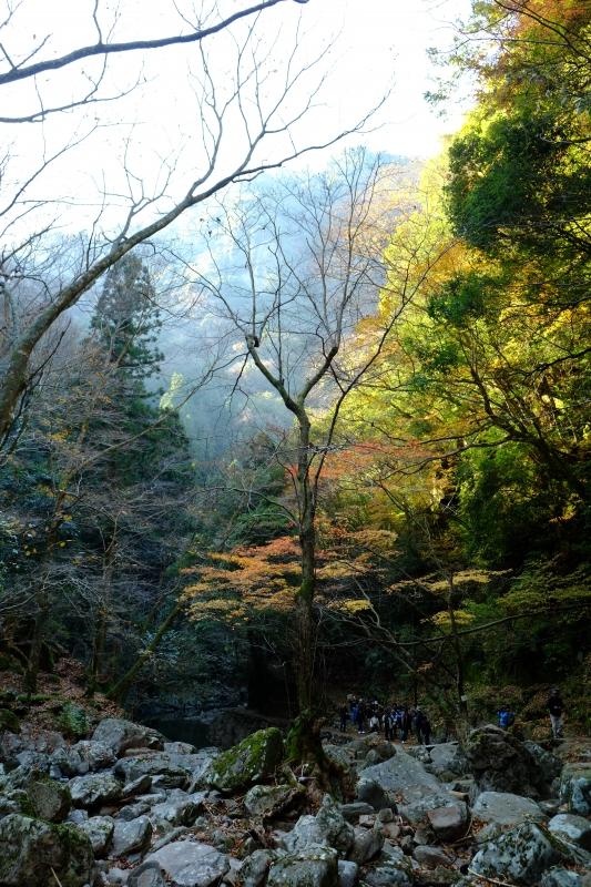 赤目登山道.JPG