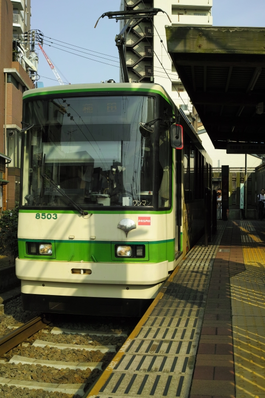 銀杏印は東京都.JPG