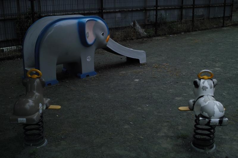 淋しげな公園動物たち.JPG