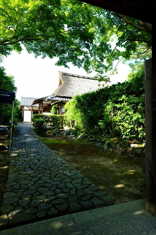 岩倉サンの隠れ家にて.JPG