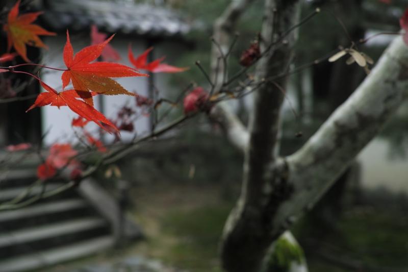 妙勝寺旧跡.JPG