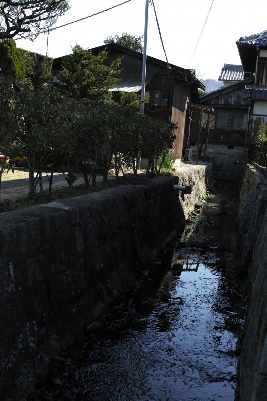 仁平川下流.JPG