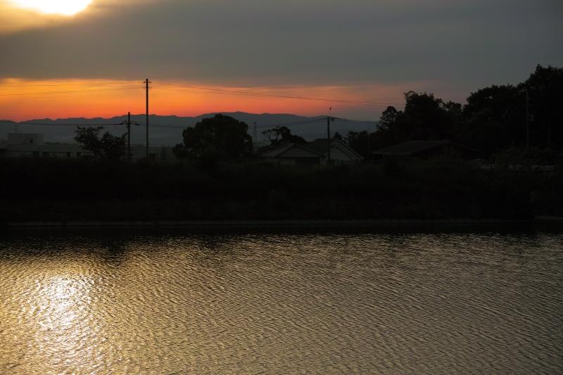 夕靄の中.JPG