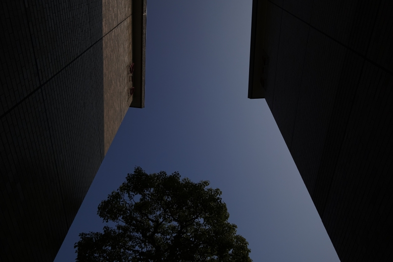 空を見ろ.JPG