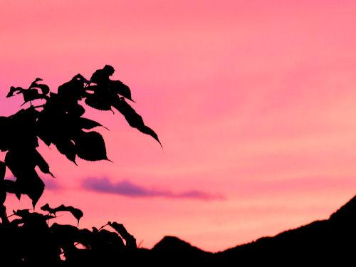 富良野の夕暮れ