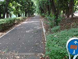 有明テニスの森公園ジョギングコース06