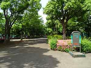 有明テニスの森公園ジョギングコース08
