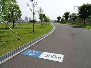 東京臨海広域防災公園ランニングコース04