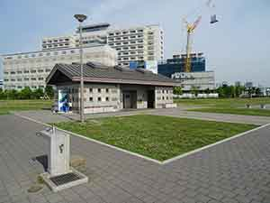 東京臨海広域防災公園ランニングコース05