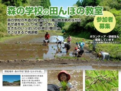 2012田んぼ体験.jpg