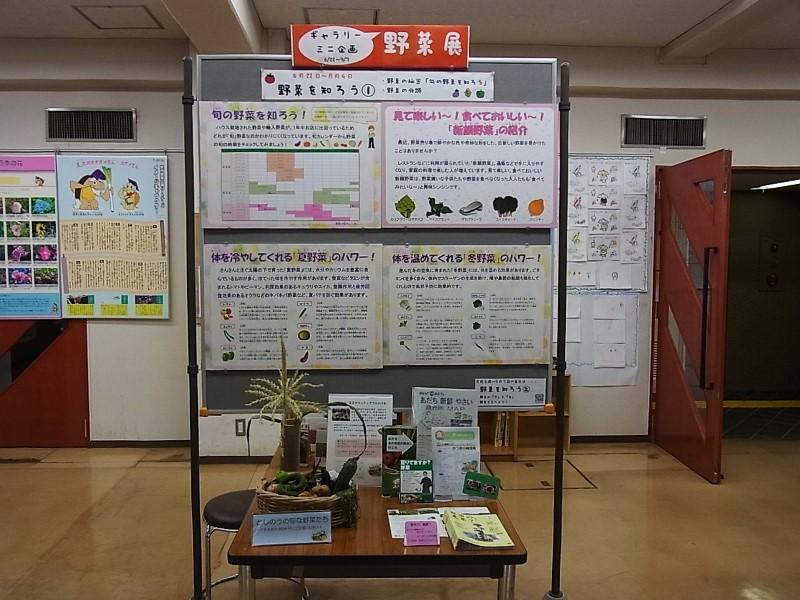 201407野菜展01 (2).JPG