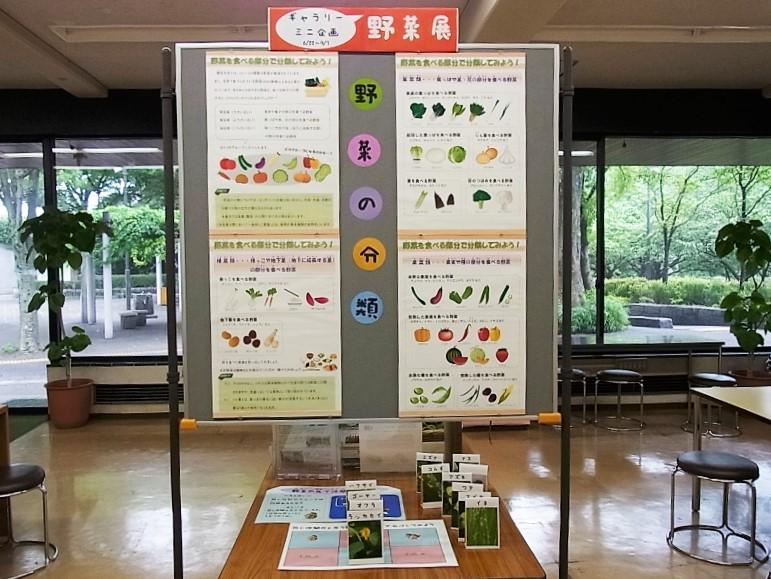 201407野菜展02 -02.JPG