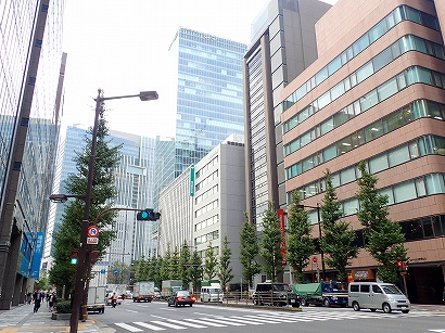 京2-3イチョウ-PA230209.jpg