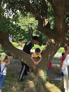 樹の幹に登る.jpg