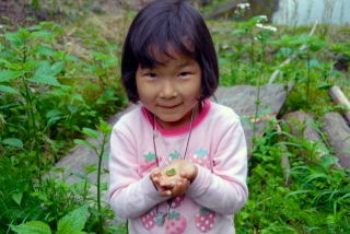 森の学校onnanokokaeruv.2.jpg