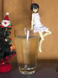 クリスマスはワイン片手に神姫とキャッキャウフフ