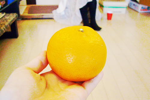 """Welcome Fruitsは""""せとか""""。ジューシーで甘くて食べ応えたっぷり!"""