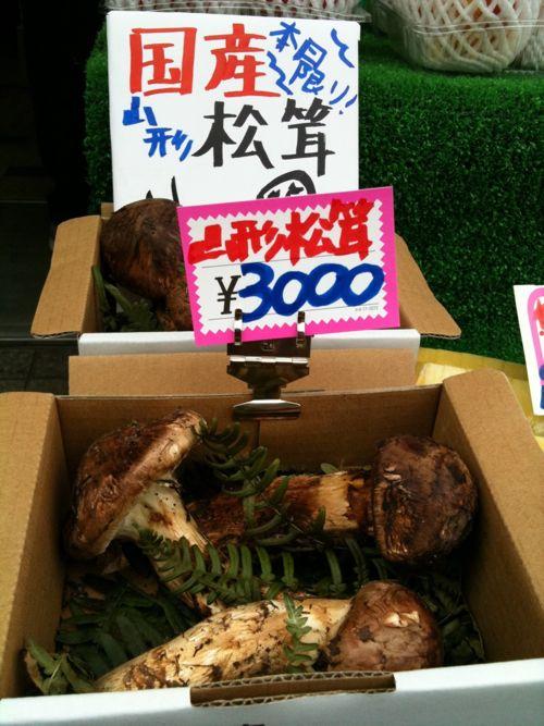 山形産松茸が200gで3000円!