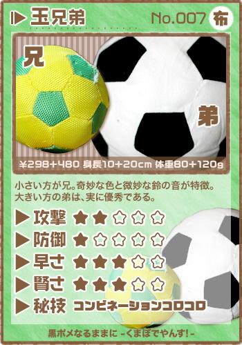 card_tama.jpg