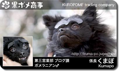 card_001kumapo.jpg